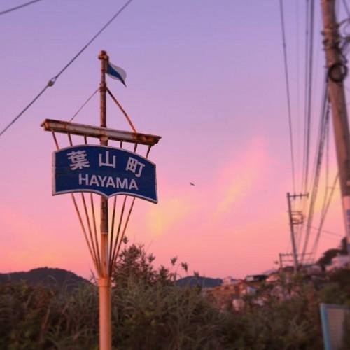【インスタレポート】親近感を沸かせる投稿とリアルイベントの開催で大人気!葉山町のインスタグラム活…