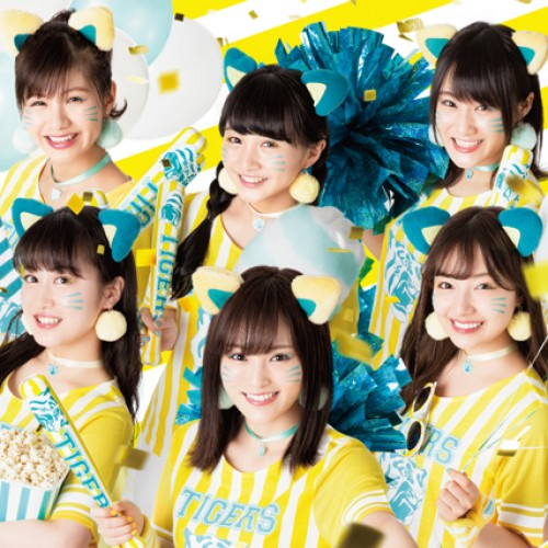 『TORACO』のインスタ活用で女の子のタイガースファンが増加中!