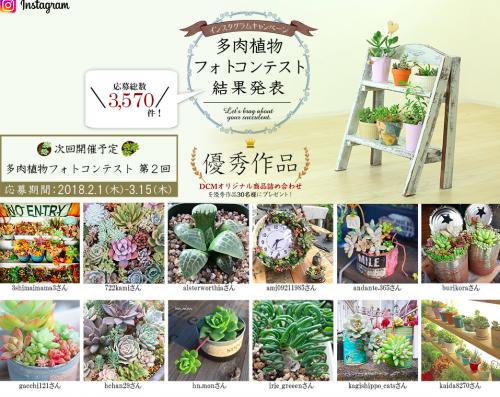 インスタグラムキャンペーン「多肉植物フォトコンテスト」